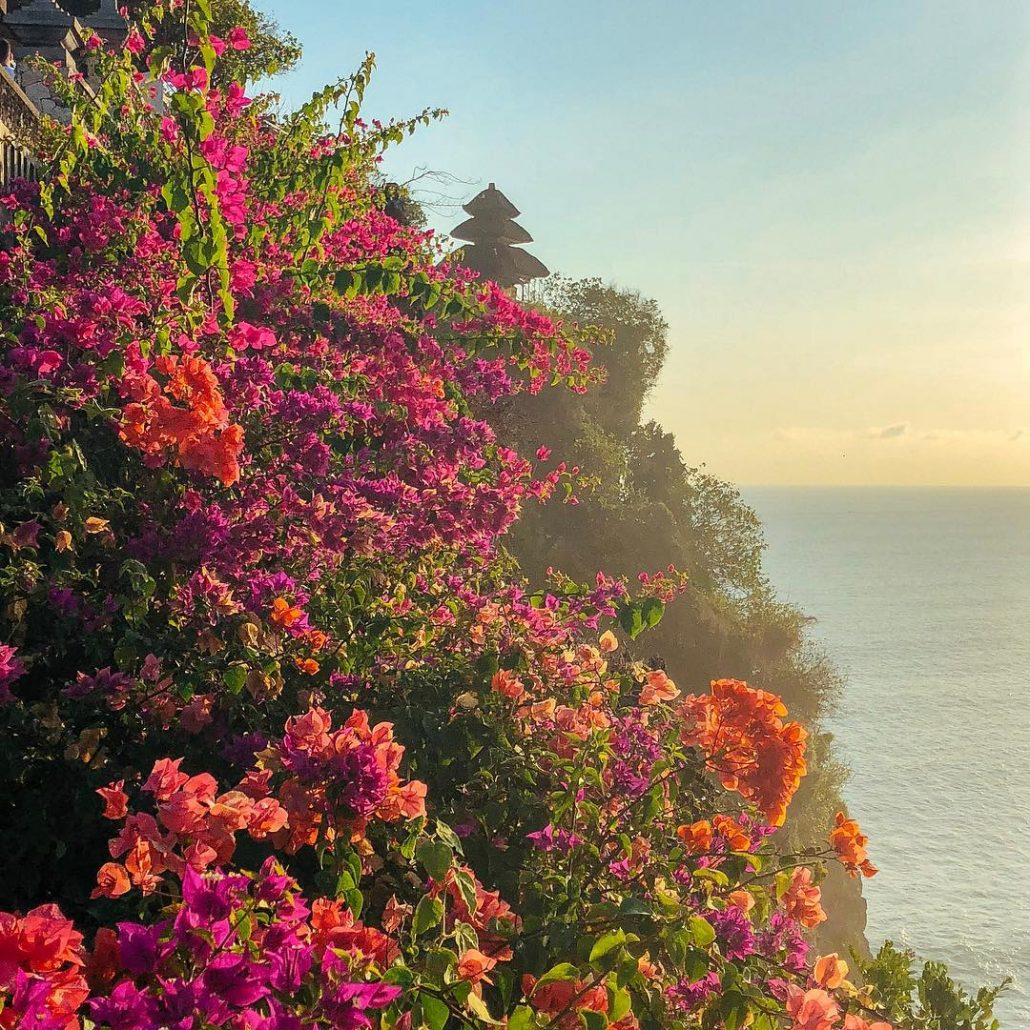 Uluwatu Temple Half Day Tour With Traditional Kecak And Fire Dance